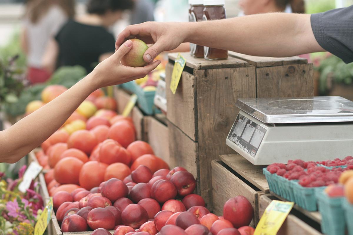 FOOD IMPORTERS & WHOLESALERS in Doha Qatar