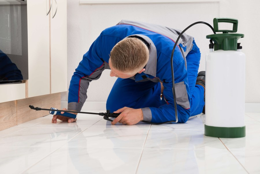 PEST CONTROL EQUIPMENT AND SUPPLIES in Doha Qatar